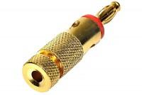 4mm BANANA MALE GOLDEN RED