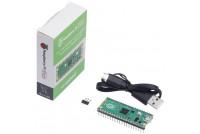 Raspberry Pi Pico (pre-soldered)